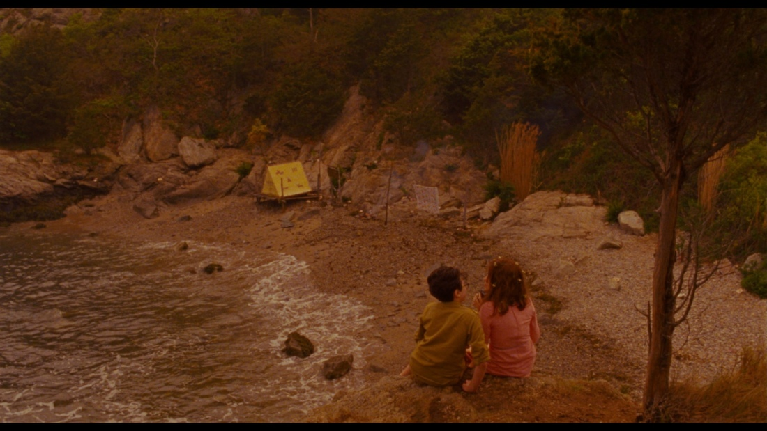 large_moonrise_kingdom_blu-ray_08